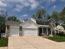Photo of 1637 Shane Drive, Imperial, MO 63052-4031 (MLS # 19006148)