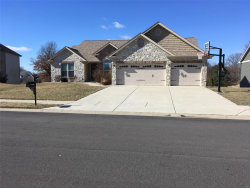 Photo of 1231 Rutledge Drive, Troy, IL 62294 (MLS # 19007174)