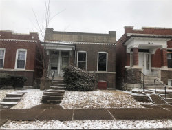Photo of 3838 Michigan Avenue, St Louis, MO 63118-4323 (MLS # 19008199)