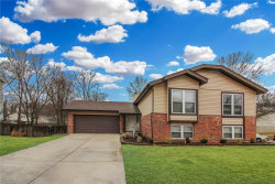 Photo of 2905 Meramar Drive, Oakville, MO 63129-5636 (MLS # 19008595)