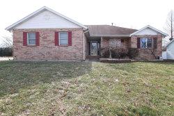 Photo of 516 Jaime Lynn Court, Edwardsville, IL 62025-2690 (MLS # 19008722)