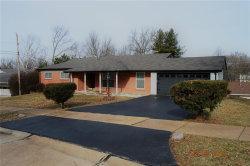 Photo of 12047 Lake Placid Drive, St Louis, MO 63146-5110 (MLS # 19009662)