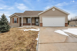 Photo of 100 Wellington Drive, Troy, MO 63379-2948 (MLS # 19010109)