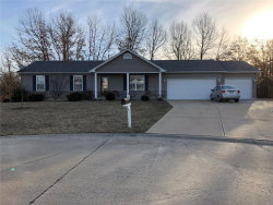 Photo of 55 Joey Court, Troy, MO 63379-2481 (MLS # 19014978)