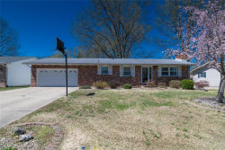 Photo of 150 Keeven Drive, Highland, IL 62249-2407 (MLS # 19015470)