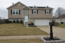 Photo of 10 Wild Horse Court, Troy, IL 62294 (MLS # 19015641)