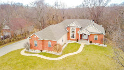 Photo of 38 Deer Trail Drive, Collinsville, IL 62234 (MLS # 19015683)