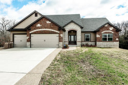 Photo of 40 Persimmon Bend Court, Troy, MO 63379-3862 (MLS # 19016042)