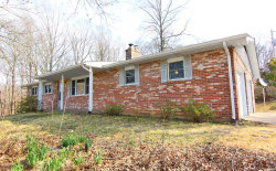 Photo of 9652 State Highway 177, Cape Girardeau, MO 63701-8709 (MLS # 19017593)