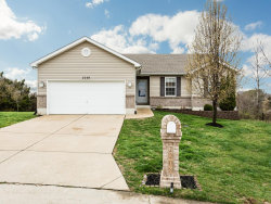 Photo of 2208 Warwick Castle Drive, Imperial, MO 63052-3867 (MLS # 19018123)