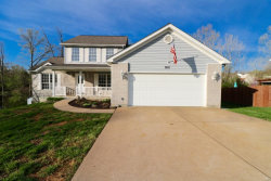 Photo of 9851 Sand Castle Drive, Pevely, MO 63070-2613 (MLS # 19018408)