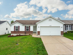 Photo of 2166 Warwick Castle Drive, Imperial, MO 63052-3869 (MLS # 19019834)