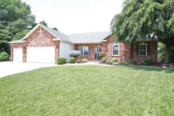 Photo of 105 Oak Hill Drive, Maryville, IL 62062 (MLS # 19020029)