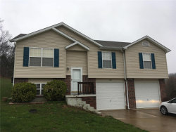 Photo of 4544 Prospect Drive, House Springs, MO 63051 (MLS # 19023086)