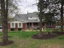 Photo of 507 Walnut Lane, Festus, MO 63028-3339 (MLS # 19024571)