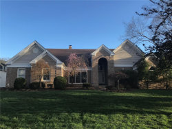 Photo of 742 Kraffel Lane, Town and Country, MO 63017-8057 (MLS # 19025389)