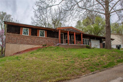 Photo of 5007 Raven Drive, Imperial, MO 63052-1537 (MLS # 19025646)