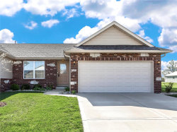 Photo of 2053 Briarbend Court, Maryville, IL 62062-5833 (MLS # 19026090)