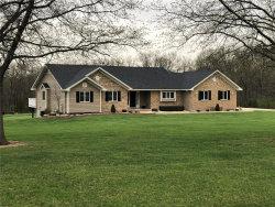 Photo of 134 Meadow Ridge Drive, Troy, MO 63379-2293 (MLS # 19026425)