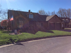 Photo of 135 Sunfish Drive, Highland, IL 62249-2427 (MLS # 19026676)