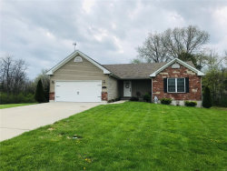 Photo of 80 Danny, Troy, MO 63379-5512 (MLS # 19026814)