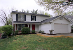 Photo of 723 Carman Woods Drive, Manchester, MO 63021-7108 (MLS # 19027587)