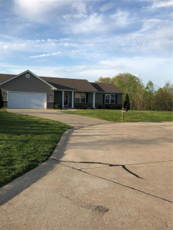 Photo of 53 Joey Court, Troy, MO 63379 (MLS # 19028041)