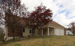 Photo of 2040 Country Field Drive, Chesterfield, MO 63017-7445 (MLS # 19028120)