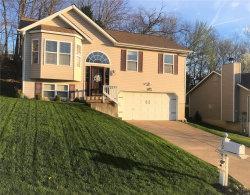 Photo of 1249 Fenton Ridge Drive, Fenton, MO 63026-7505 (MLS # 19028816)
