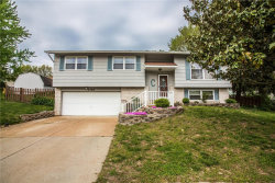 Photo of 2729 Sky Hill, St Louis, MO 63129-4207 (MLS # 19029208)