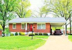 Photo of 9108 Damson Drive, St Louis, MO 63123-5516 (MLS # 19029253)