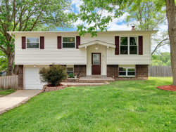 Photo of 1094 Orchard Drive, Pevely, MO 63070-2005 (MLS # 19034695)