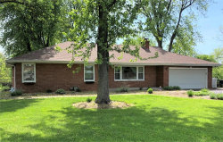 Photo of 216 Park Drive, Edwardsville, IL 62025 (MLS # 19036466)