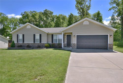 Photo of 224 Parkway Drive, Troy, MO 63379-2941 (MLS # 19037649)