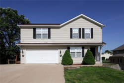 Photo of 20 Hamlet Drive, Troy, MO 63379 (MLS # 19037942)
