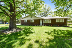 Photo of 121 Willow Drive, Collinsville, IL 62234-5110 (MLS # 19038013)