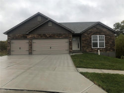 Photo of 117 Regal Court, Herculaneum, MO 63048 (MLS # 19038176)