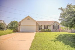 Photo of 2724 Stone Valley Drive, Maryville, IL 62062-6411 (MLS # 19039009)