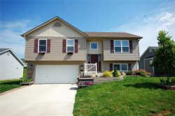 Photo of 433 Gerber Drive, Moscow Mills, MO 63362-2367 (MLS # 19039036)