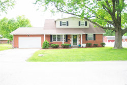 Photo of 54 Country Place Lane, Granite City, IL 62040-5282 (MLS # 19041585)
