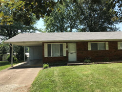 Photo of 507 Lanahan , Unit A, Troy, IL 62294 (MLS # 19042243)