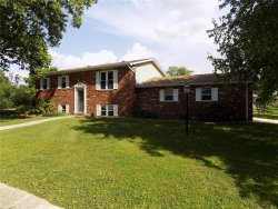 Photo of 13 Nassau Drive, Maryville, IL 62062-5617 (MLS # 19042713)