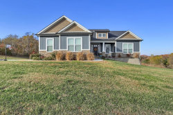 Photo of 1013 Carriage House Drive, Festus, MO 63028-5410 (MLS # 19045758)
