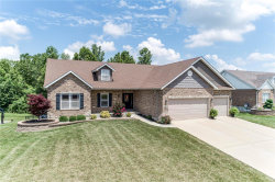 Photo of 563 Wernings Drive, Columbia, IL 62236 (MLS # 19048672)