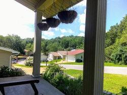 Photo of 7200 Burgess Drive, Barnhart, MO 63012-1432 (MLS # 19053186)