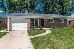 Photo of 7447 Ahern Court, St Louis, MO 63130-2216 (MLS # 19055184)