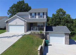 Photo of 801 Carly Court, Pevely, MO 63070 (MLS # 19057476)