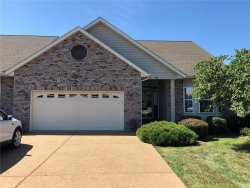 Photo of 325 Royal Bluff Court, Troy, MO 63379-2047 (MLS # 19058682)