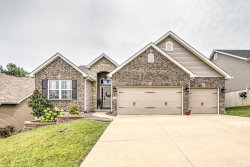 Photo of 348 Amber Bluff Lane, Imperial, MO 63052-3138 (MLS # 19058912)