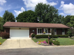 Photo of 2800 Orchid Court, Highland, IL 62249 (MLS # 19059311)